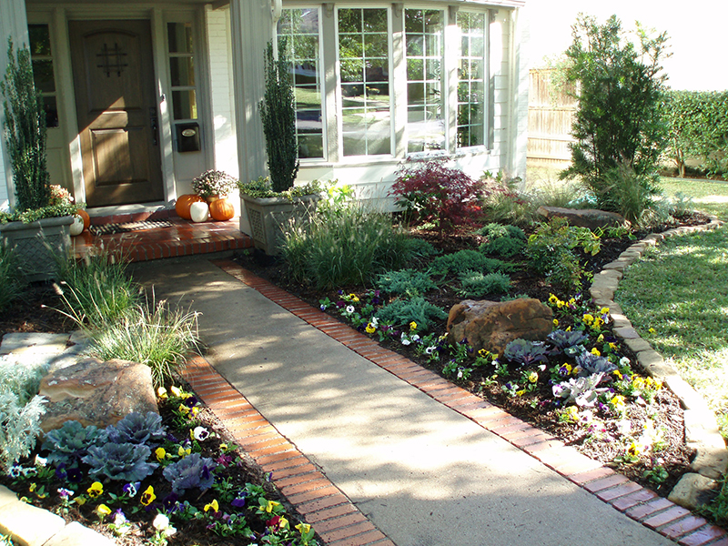Xeriscape Design tips for Texas