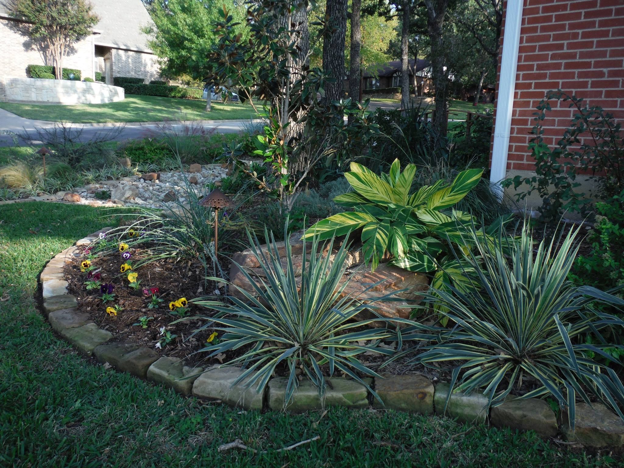 Texas landscaping ideas fort worth tx low water for Best no maintenance plants