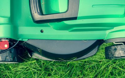 Summertime lawn maintenance tips for Texas homeowners